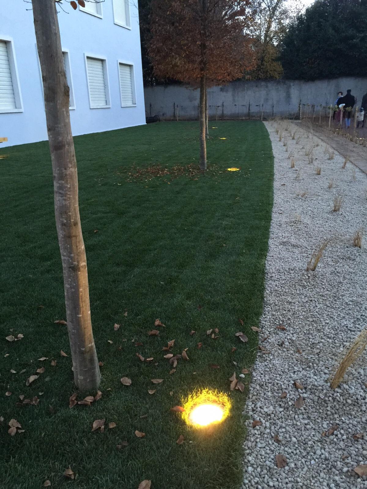 Teatro_Alcuni_luci_albero