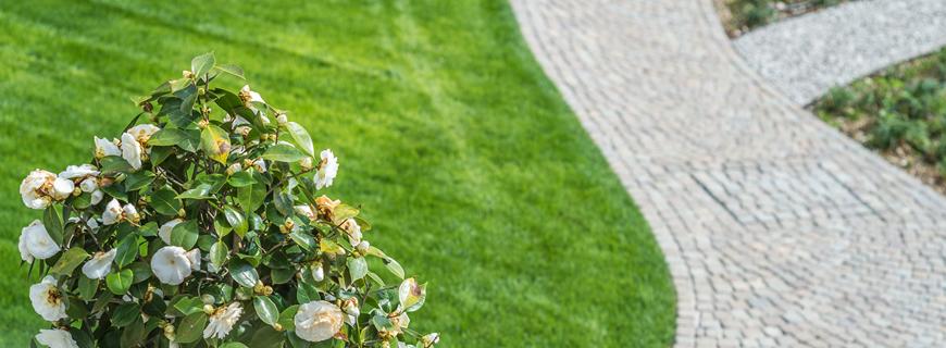 Cosa considerare per progettare un giardino dal ben giardini for Progettare un terrazzo giardino