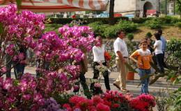 fiera-fiori-veneto-maggio