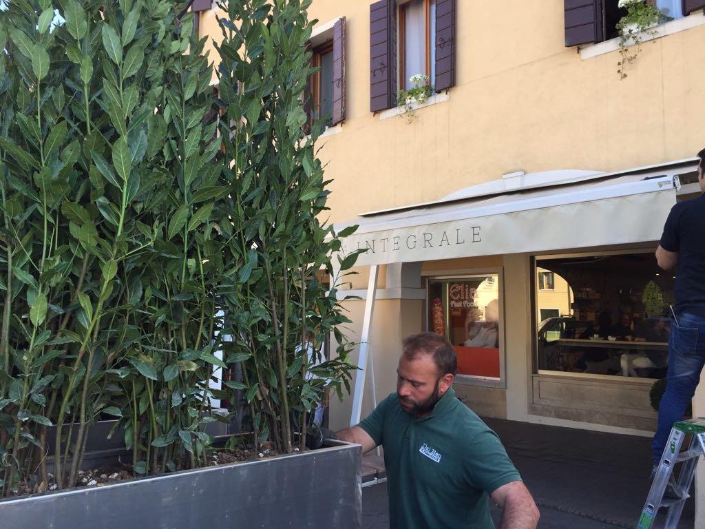 vasche-piante-outdoor