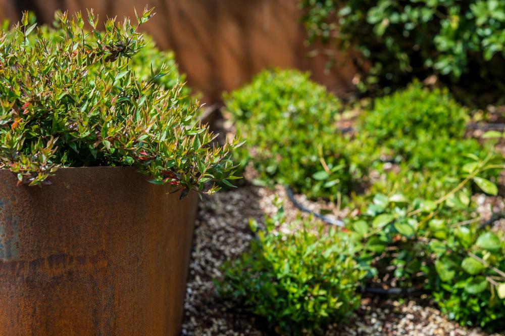 Fioriere e vasi come organizzare le tue piante in for Vasi e piante da terrazzo
