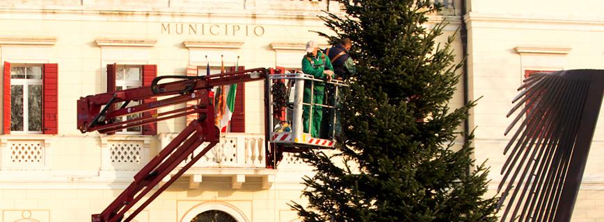 Dal Ben Giardini contribuisce all'allestimento dell'albero di Natale a Scorzè