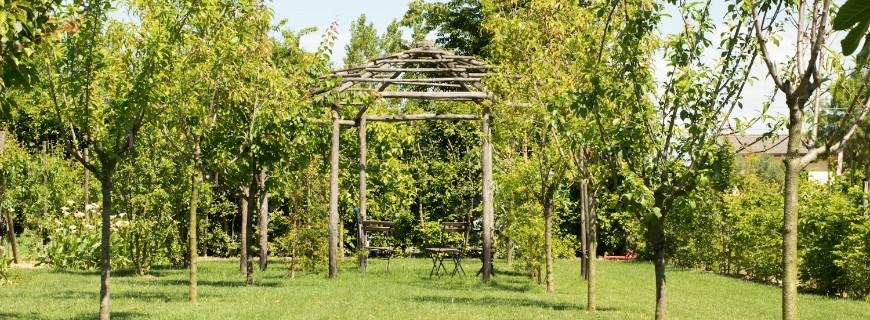 Quali lavori son da fare a Giugno in giardino?