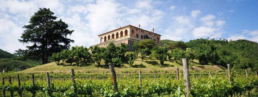 L'evento del FAI è un'ottima occasione per visitare il giardino di Villa dei Vescovi