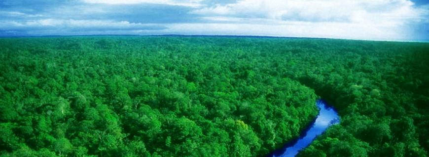5 Giugno 2014, è la Giornata mondiale dell'Ambiente