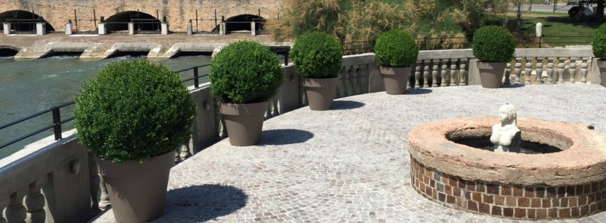 Realizzazione di un giardino privato a Treviso