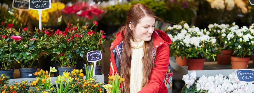Andar per fiere e feste dei fiori ad Aprile e Maggio 2016