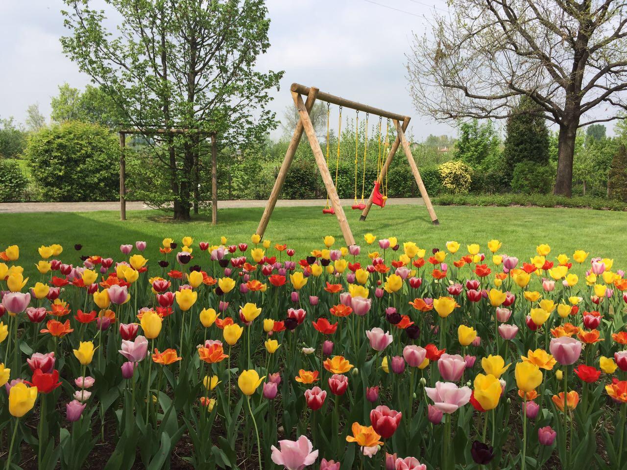 dal-ben-giardini-tulipani-bulbi